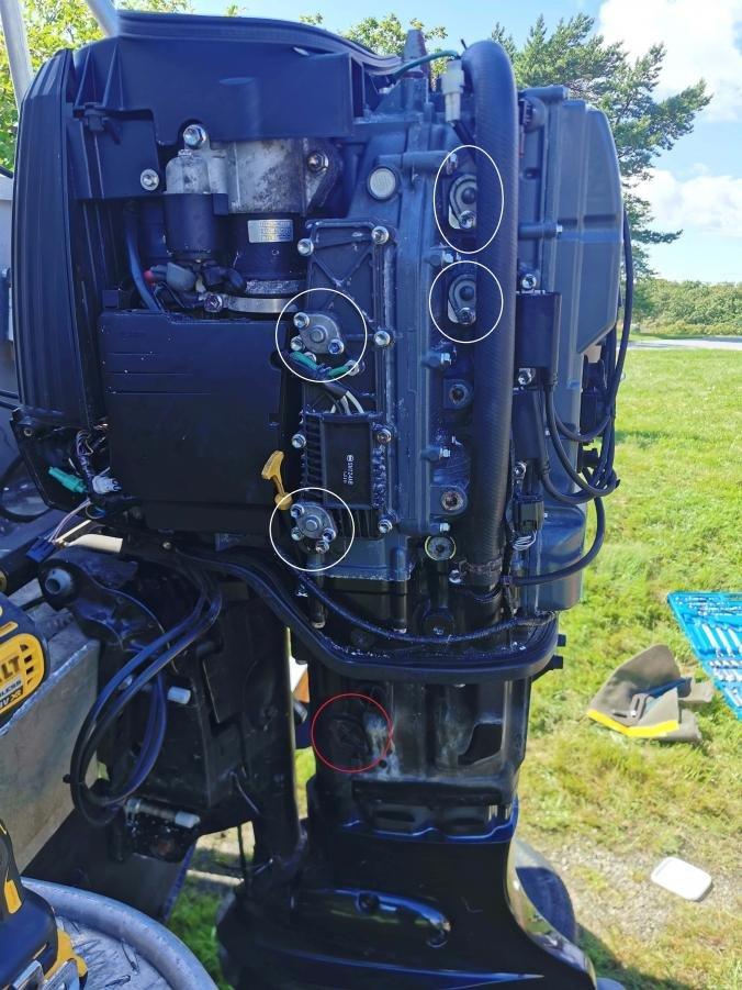 Suzuki-anoder.jpg.c9e31a1e5cece93e4b52dac133500ae6.jpg
